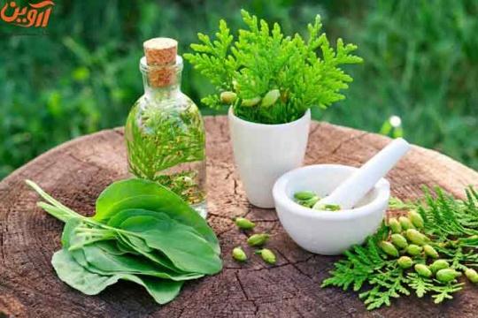 رتبه لازم برای قبولی گیاه پزشکی